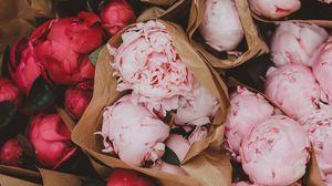 Превью обои пионы, цветы, букеты, розовый, красный