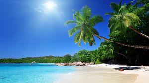 Превью обои пляж, песок, пальмы, тропики