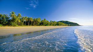 Превью обои пляж, тропики, море, песок, пальмы, пена