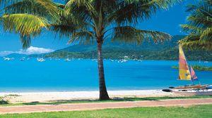 Превью обои пляж, тропики, море, песок, пальмы, яхты