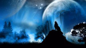 Превью обои полнолуние, волк, природа