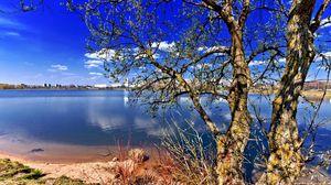 Превью обои природа, дерево, река