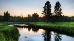 Превью обои река, трава, вечер, деревья