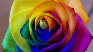 Превью обои роза, радужный, бутон, разноцветный