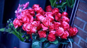 Превью обои розы, букет, цветы, розовые