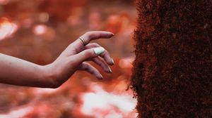 Превью обои рука, дерево, мох, касание