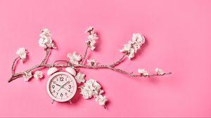 Превью обои сакура, цветы, часы, будильник, минимализм, розовый