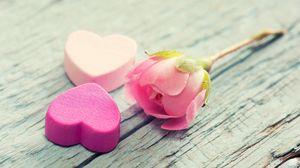 Превью обои сердце, цветок, нежность, розовый