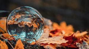 Превью обои шар, стекло, осень, листва, отражение