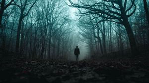 Превью обои силуэт, лес, туман, одиночество, мрачный