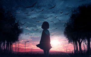 Превью обои силуэт, закат, птицы, сумерки, арт
