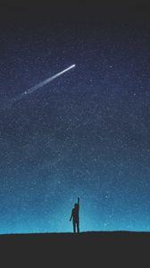 Превью обои силуэт, звездное небо, падающая звезда, ночь, арт