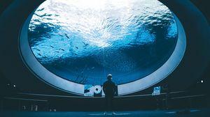 Превью обои аквариум, человек, помещение, вода, рыба