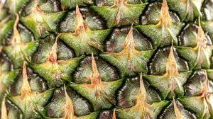 Превью обои ананас, фрукт, макро, поверхность