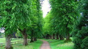 Превью обои англия, деревья, парк, аллея, забор