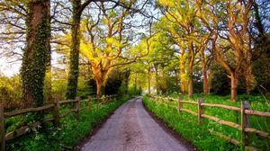 Превью обои англия, великобритания, природа, дорога, зелень, трава, забор, деревья, солнце, рассвет