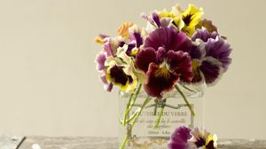 Превью обои анютины глазки, цветы, букет, банка