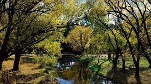 Превью обои австралия, лес, озеро, берега, деревья