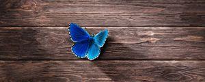 Превью обои бабочка, поверхность, деревянный