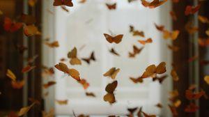 Превью обои бабочки, помещение, декорация, оформление, размытость