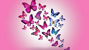 Превью обои бабочки, рисунок, полет, разноцветные, фон, розовый
