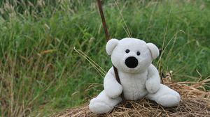 Превью обои белый, игрушка, мишка, настроения, прогулка, сено, трава