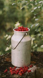 Превью обои малина, ягоды, бидон, урожай