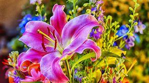 Превью обои букет, лилия, розовая, стиль