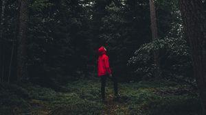 Превью обои человек, лес, одиночество, уединение, деревья, швеция