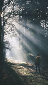 Превью обои человек, лес, солнечный, свет, туман, природа