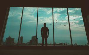 Превью обои человек, силуэт, окно, птицы