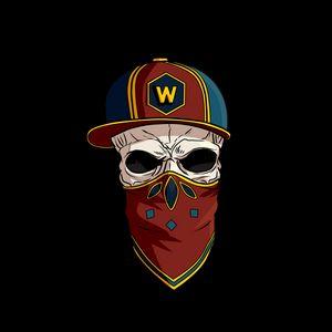 Превью обои череп, кепка, бандана, логотип, inst