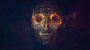 Превью обои череп, линий, розы, геометрия