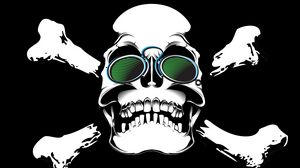 Превью обои череп, очки, кости, арт
