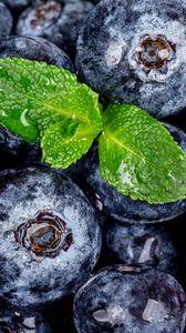 Превью обои черника, ягоды, мята, мокрый, макро