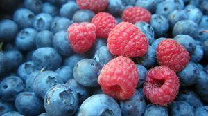 Превью обои черника, малина, ягоды