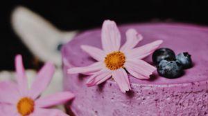Превью обои чизкейк, пирог, выпечка, черника, цветы