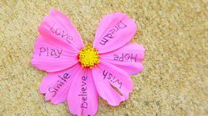 Превью обои цветок, надписи, лепестки