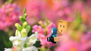Превью обои danboard, цветы, одиночество, фотоаппарат