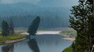 Превью обои деревья, лес, горы, озеро, туман, природа