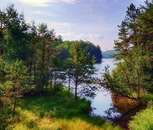 Превью обои деревья, лес, озеро, природа, пейзаж