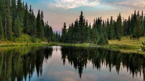 Превью обои деревья, лес, озеро, отражение, природа