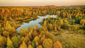 Превью обои деревья, лес, озеро, осень, пейзаж, вид сверху