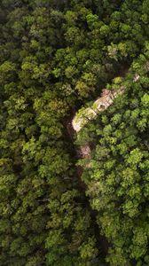 Превью обои деревья, лес, вид сверху, природа, зеленый