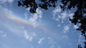 Превью обои ветки, облака, радуга, природа