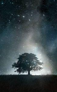Превью обои дерево, абстракция, свет, ночь