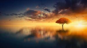 Превью обои дерево, горизонт, закат, фотошоп, море