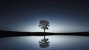 Превью обои дерево, отражение, вода, ночь