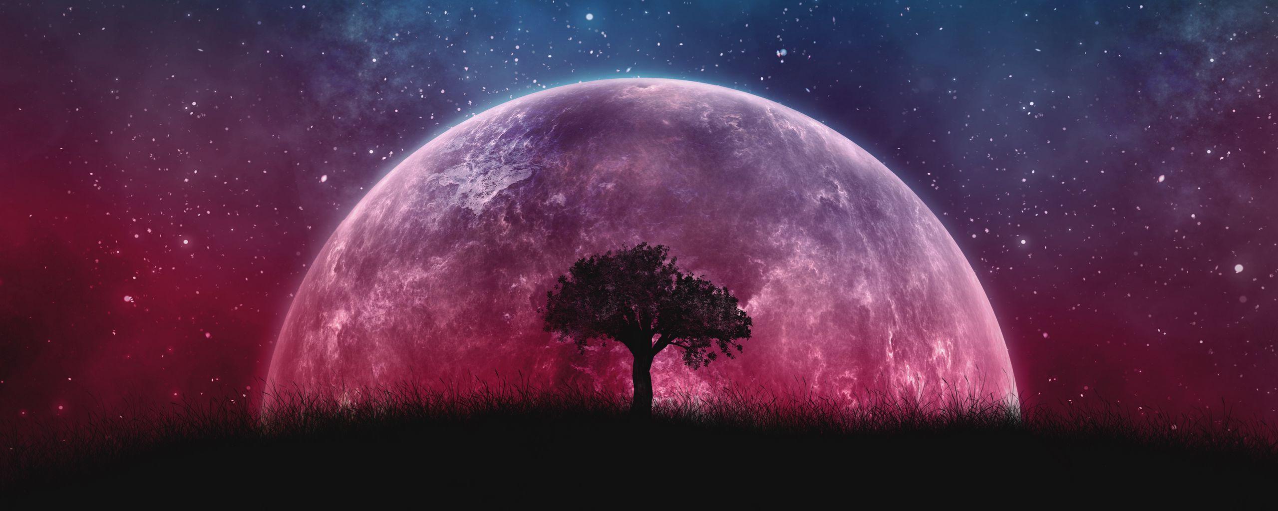 2560x1024 Обои дерево, планета, звезды, галактика, арт