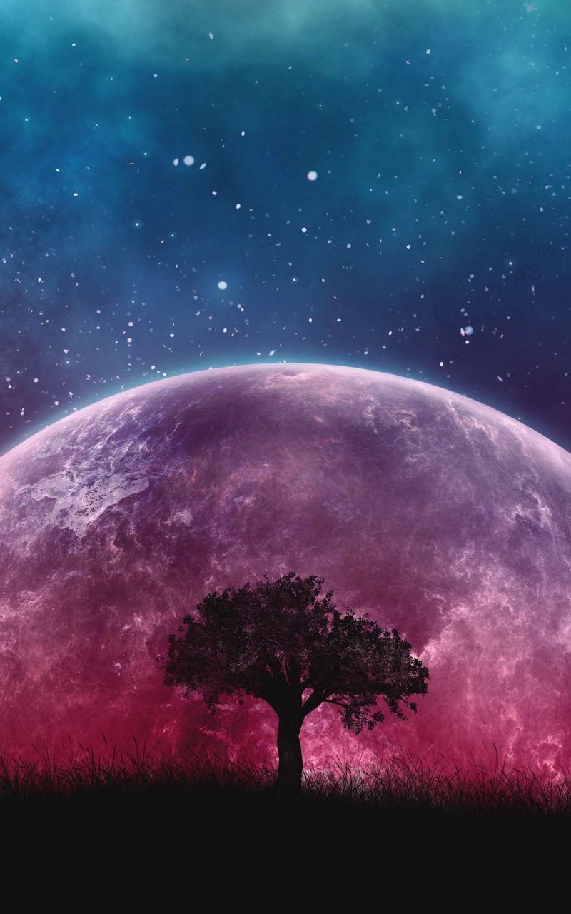 800x1280 Обои дерево, планета, звезды, галактика, арт